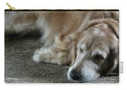 Sleeping Golden Carry-all Pouch