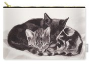 Sleeping Kittens Carry-all Pouch