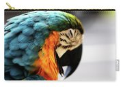 Sleeping Macaw Carry-all Pouch