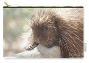 Sleeping Porcupine On A Fallen Branch Carry-all Pouch