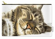 Sleeping Tabby Cat  Carry-all Pouch
