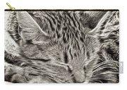 Sleeping Tabby Carry-all Pouch
