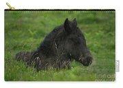 Sleepy Dartmoor Foal Carry-all Pouch