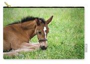 Sleepy Foal Carry-all Pouch