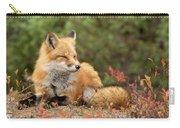 Sleepy Fox Carry-all Pouch