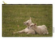 Sleepy Lamb Carry-all Pouch