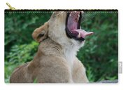 Sleepy Lion Carry-all Pouch