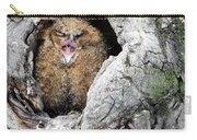 Sleepy Owlet Carry-all Pouch