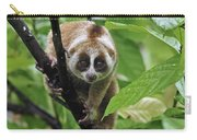 Slow Loris Nycticebus Coucang, Northern Carry-all Pouch