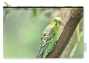 Small Budgie Birds With Beautiful Colored Feathers Carry-all Pouch