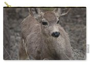 Small Fawn In Tombstone Carry-all Pouch