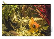Small Fish In An Aquarium Carry-all Pouch