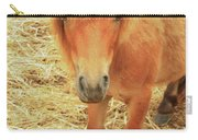 Small Horse Large Beauty Carry-all Pouch