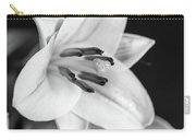Small Lily-2 Bw Carry-all Pouch