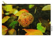 Small Mushroom In Autumn Carry-all Pouch