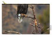 Smith Rock Bald Eagle Carry-all Pouch