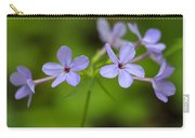 Smoky Wildflowers Carry-all Pouch