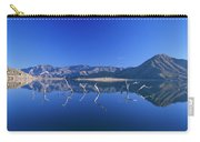 Snags- Lake Isabella Carry-all Pouch