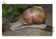 Snail On A Log Carry-all Pouch