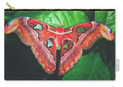 Snakehead Moth Carry-all Pouch