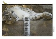 Snow Leopard Nap Carry-all Pouch