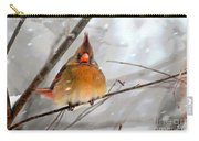 Snow Surprise Carry-all Pouch by Lois Bryan