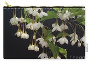 Snowbell Tree Carry-all Pouch