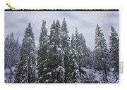 Snowy Christmas At Big Bear Lake Carry-all Pouch
