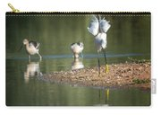 Snowy Egret Stretch 4280-080917-2cr Carry-all Pouch