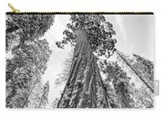 Snowy Sequoias At Calaveras Big Tree State Park Black And White 6 Carry-all Pouch