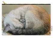 Snugglepuss Carry-all Pouch