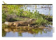 Soaking In The Sun Carry-all Pouch by Scott Pellegrin