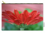 Soft Red Carry-all Pouch