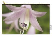Softened Hosta Bloom Nature Photograph  Carry-all Pouch