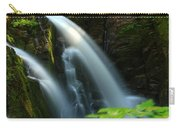 Sol Duc Falls 1 Carry-all Pouch