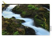 Sol Duc Falls 2 Carry-all Pouch