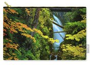 Sol Duc Falls In Autumn Carry-all Pouch