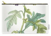 Solanum Quercifolium Carry-all Pouch