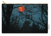 Solar Disguise Carry-all Pouch