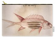 Soldier-fish, 1585 Carry-all Pouch