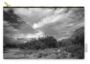 Sonoran Afternoon H10 Carry-all Pouch