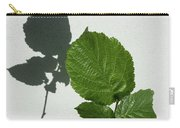 Sophisticated Shadows - Glossy Hazelnut Leaves On White Stucco - Vertical View Upwards Left Carry-all Pouch