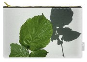 Sophisticated Shadows - Glossy Hazelnut Leaves On White Stucco - Vertical View Upwards Right Carry-all Pouch