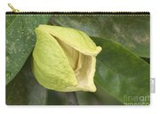 Soursop Fruit Blossom Carry-all Pouch