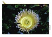 South African Flower 1 Carry-all Pouch
