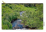 South Fork Ranch Creek Colorado Carry-all Pouch