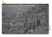South Mountain Phoenix Carry-all Pouch