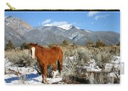 South West Ginger Carry-all Pouch