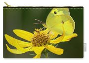 Southern Dogface Butterfly Carry-all Pouch