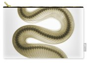 Southern Pacific Rattlesnake, X-ray Carry-all Pouch